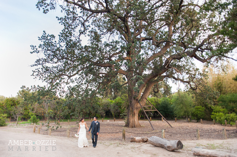 Orcutt Ranch Wedding.Amber Ozzie Los Angeles Orcutt Ranch Wedding Candice