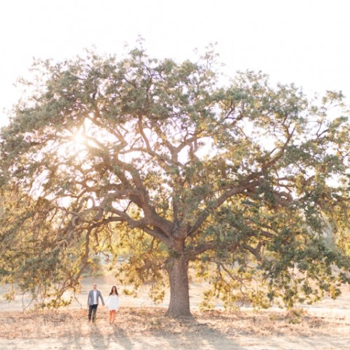 Marissa + Andrew { Agoura Hills, California - Engagement Session }